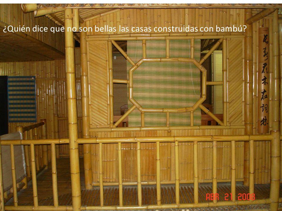 ¿Quién dice que no son bellas las casas construidas con bambú