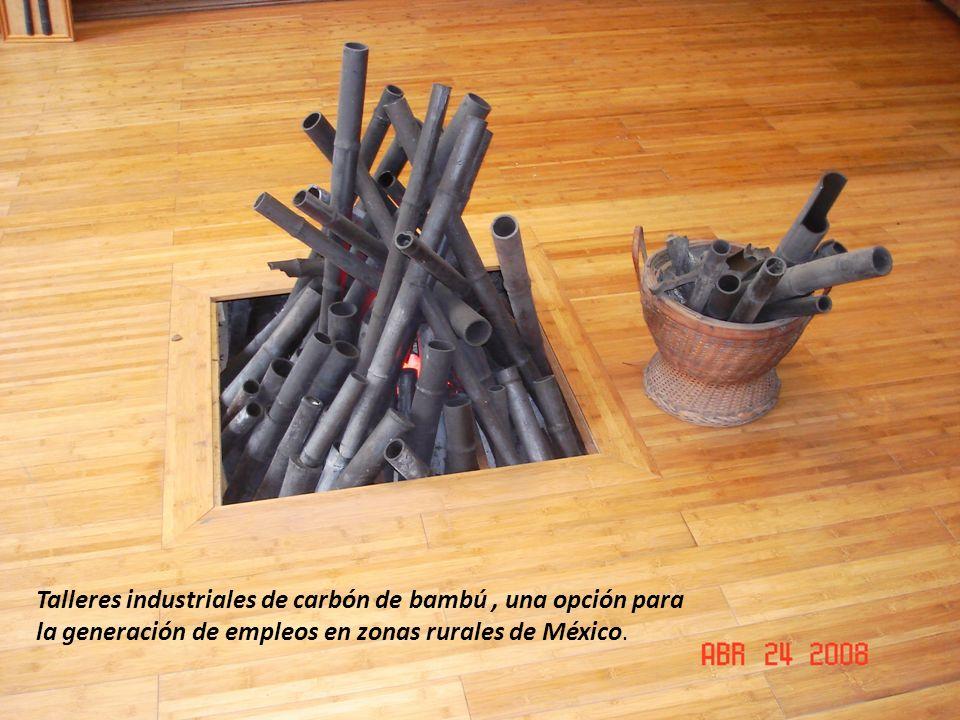 Talleres industriales de carbón de bambú , una opción para