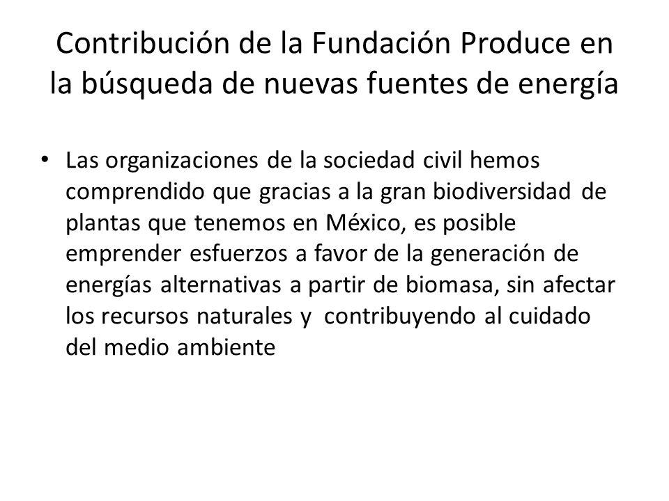 Contribución de la Fundación Produce en la búsqueda de nuevas fuentes de energía