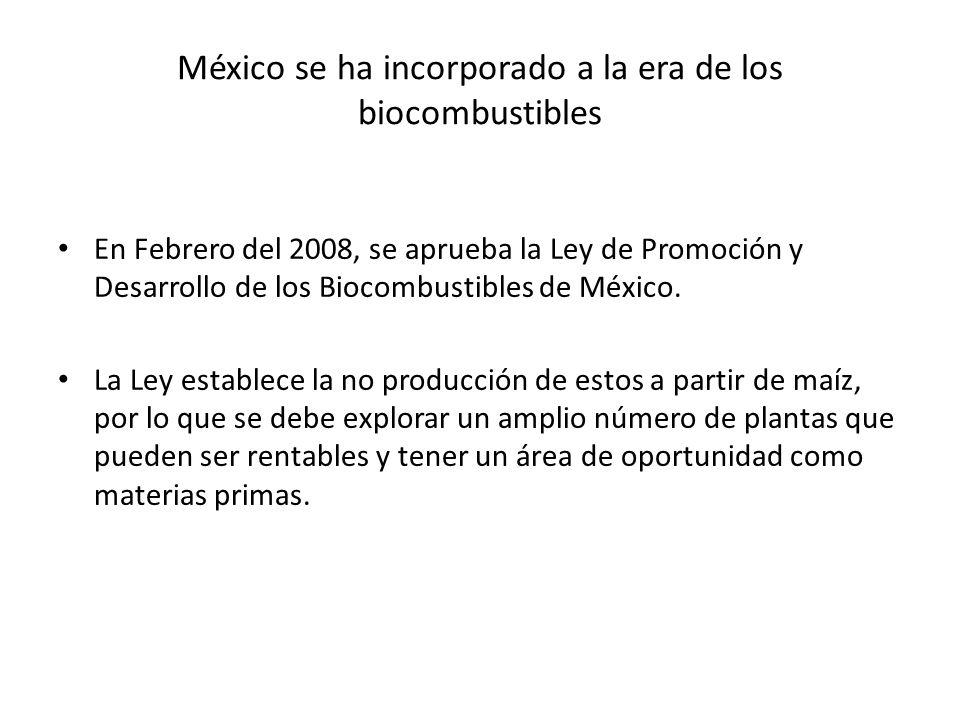 México se ha incorporado a la era de los biocombustibles