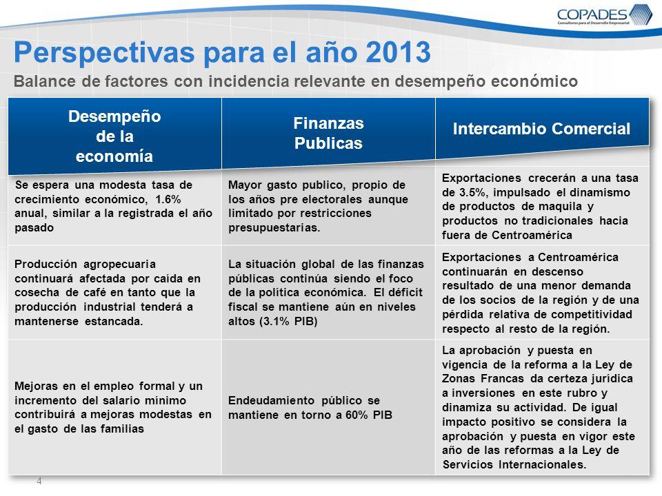 Perspectivas para el año 2013