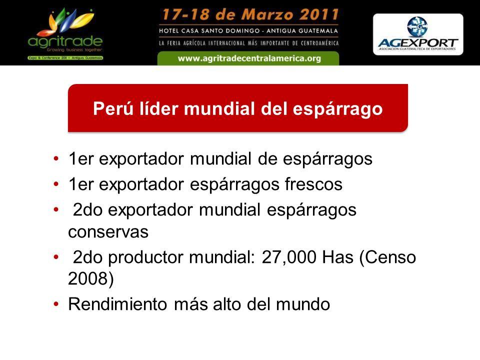 Perú líder mundial del espárrago