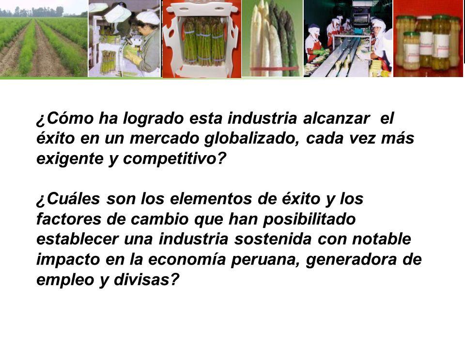 ¿Cómo ha logrado esta industria alcanzar el éxito en un mercado globalizado, cada vez más exigente y competitivo.