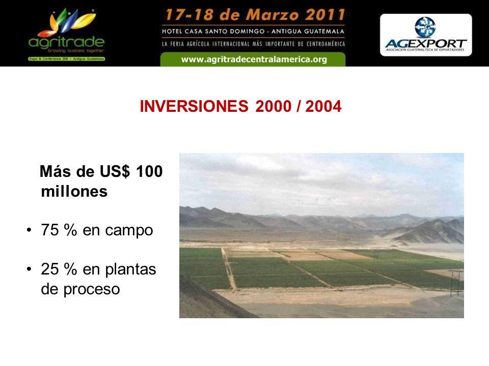INVERSIONES 2000 / 2004 Más de US$ 100 millones 75 % en campo 25 % en plantas de proceso