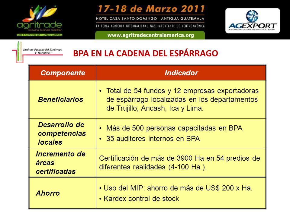 BPA EN LA CADENA DEL ESPÁRRAGO