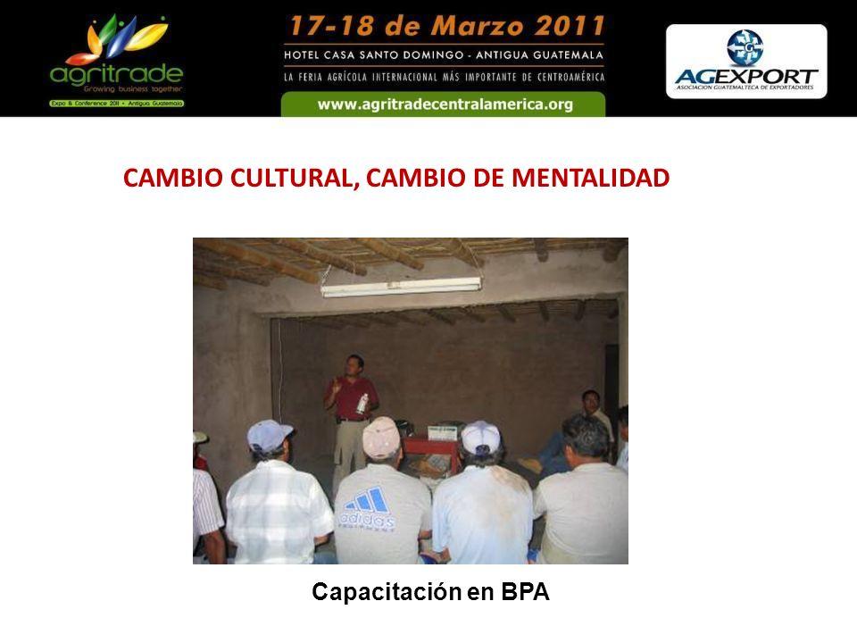 CAMBIO CULTURAL, CAMBIO DE MENTALIDAD