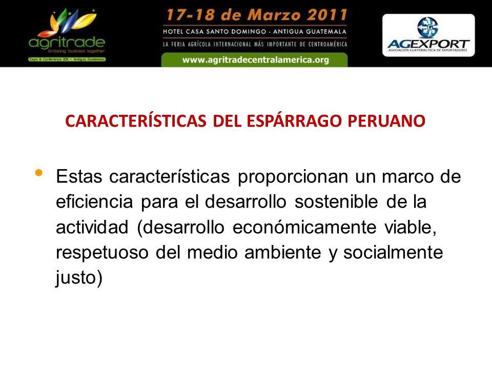 CARACTERÍSTICAS DEL ESPÁRRAGO PERUANO
