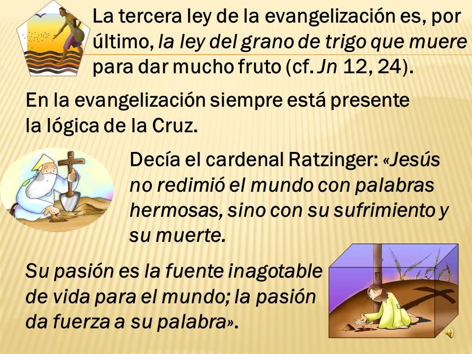 La tercera ley de la evangelización es, por último, la ley del grano de trigo que muere para dar mucho fruto (cf. Jn 12, 24).
