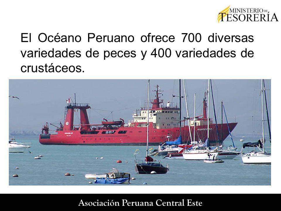 El Océano Peruano ofrece 700 diversas variedades de peces y 400 variedades de crustáceos.