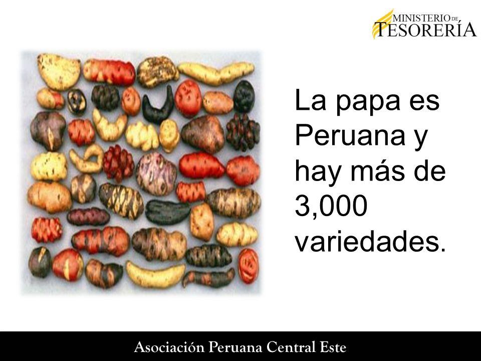La papa es Peruana y hay más de 3,000 variedades.