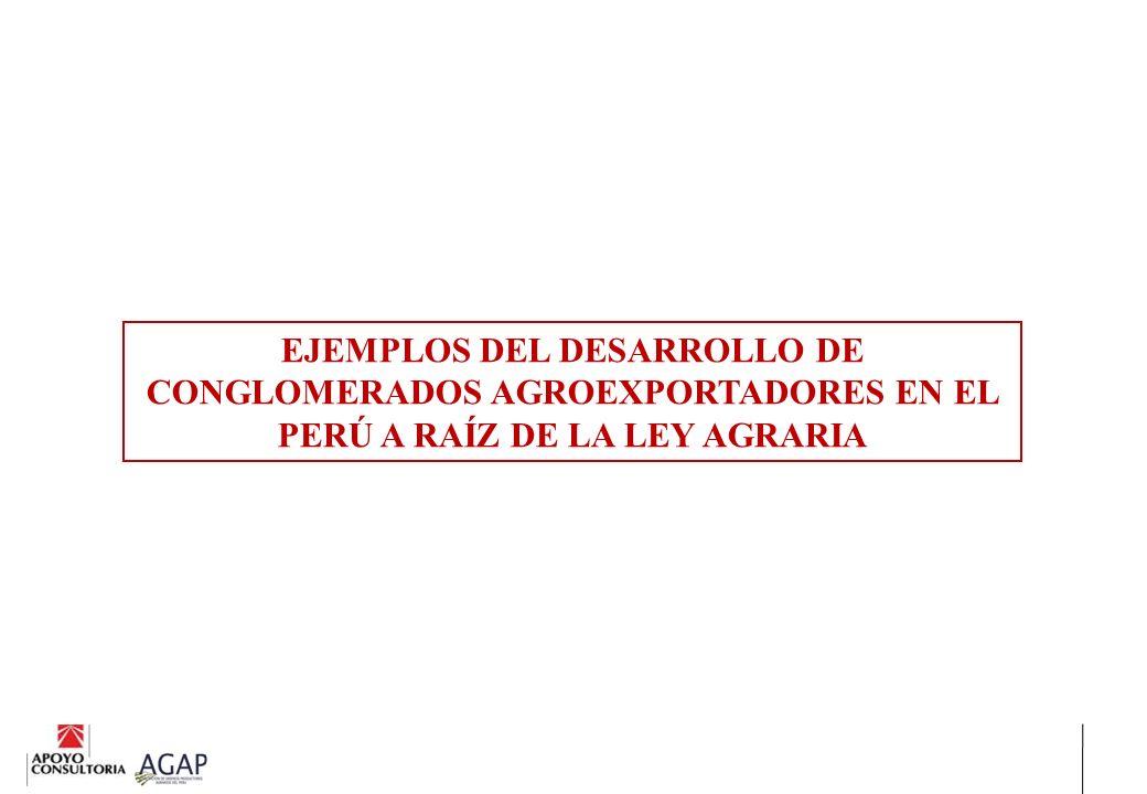 EJEMPLOS DEL DESARROLLO DE CONGLOMERADOS AGROEXPORTADORES EN EL PERÚ A RAÍZ DE LA LEY AGRARIA
