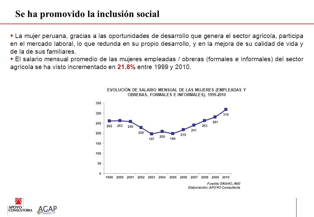 Se ha promovido la inclusión social
