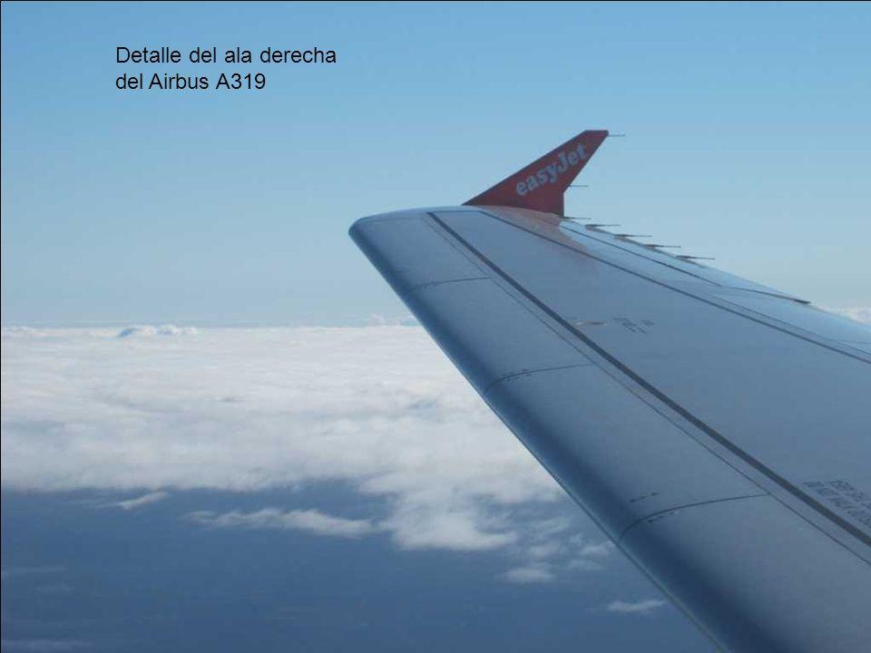 Detalle del ala derecha del Airbus A319
