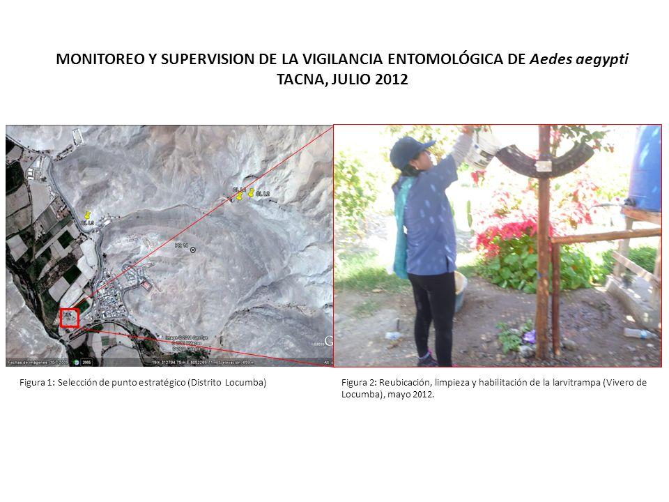 MONITOREO Y SUPERVISION DE LA VIGILANCIA ENTOMOLÓGICA DE Aedes aegypti TACNA, JULIO 2012