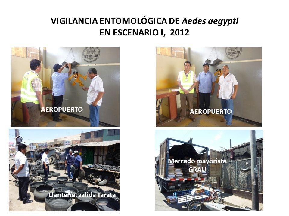 VIGILANCIA ENTOMOLÓGICA DE Aedes aegypti EN ESCENARIO I, 2012