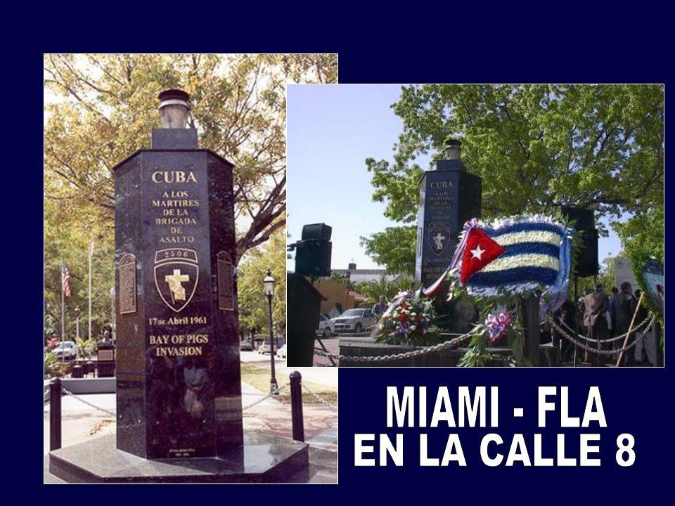 MIAMI - FLA EN LA CALLE 8