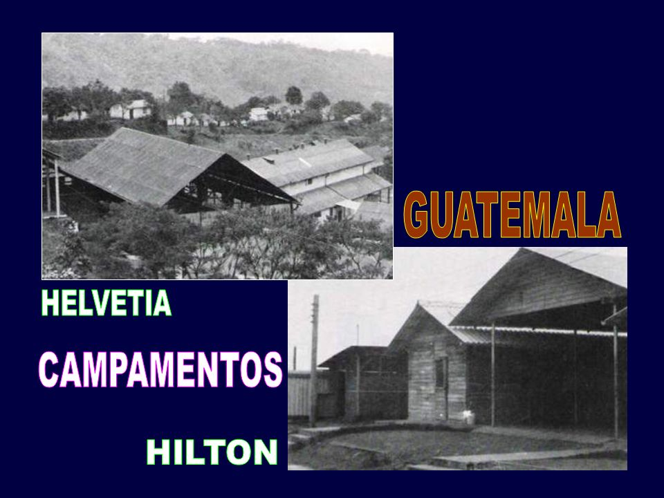 GUATEMALA HELVETIA CAMPAMENTOS HILTON