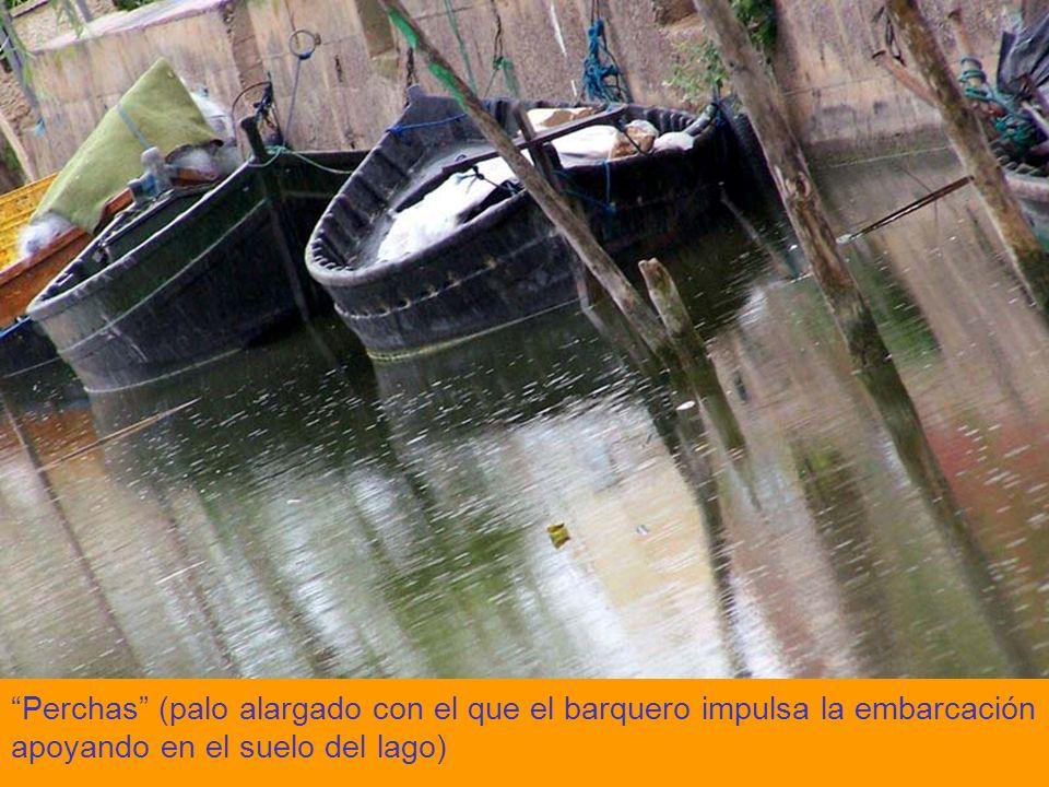 Perchas (palo alargado con el que el barquero impulsa la embarcación apoyando en el suelo del lago)