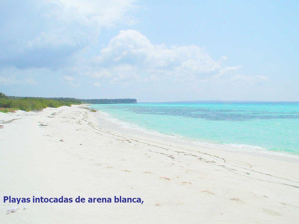 Playas intocadas de arena blanca,