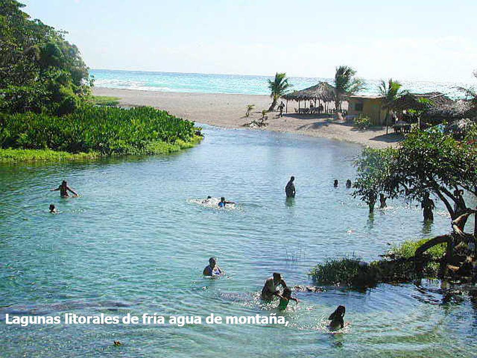 Lagunas litorales de fría agua de montaña,