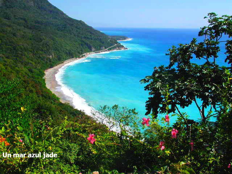 Un mar azul jade La Sierra de Barohuco y sus bosques húmedos,
