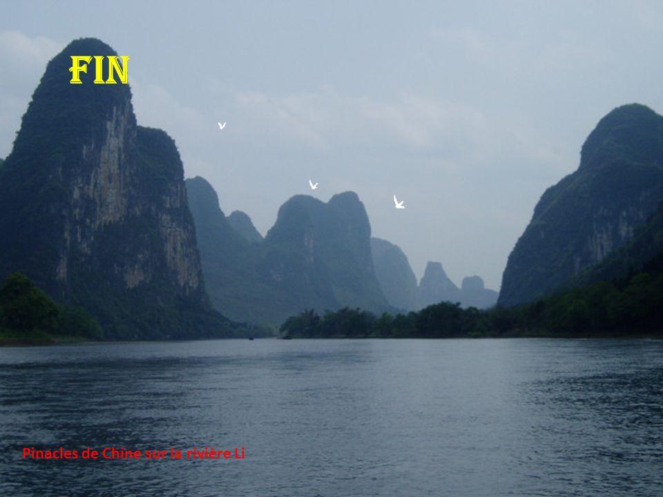 FIN Pinacles de Chine sur la rivière Li