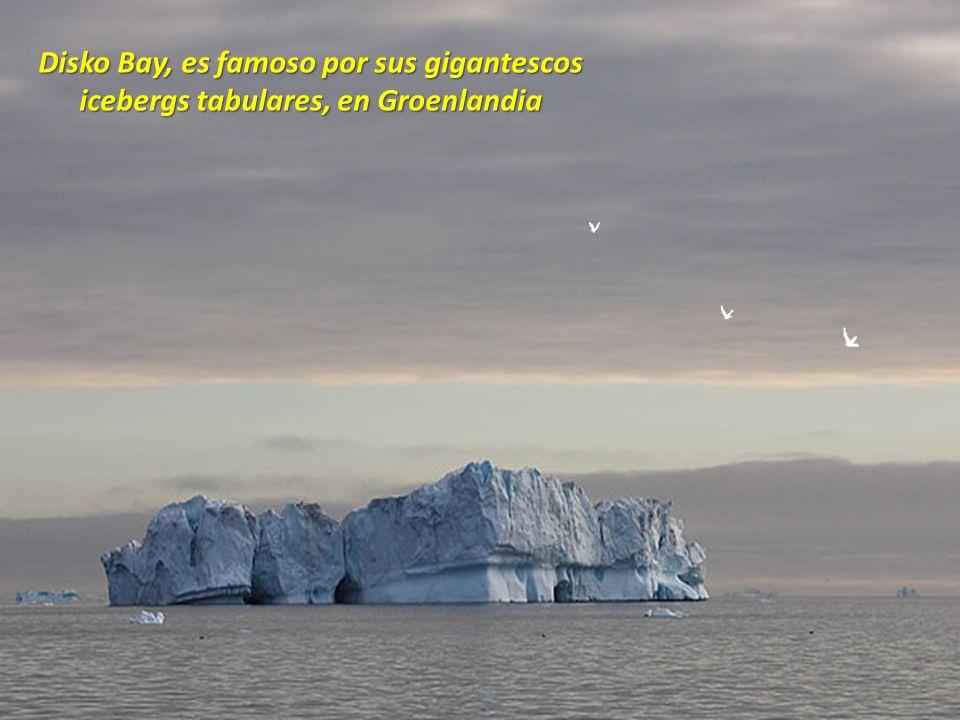 Disko Bay, es famoso por sus gigantescos icebergs tabulares, en Groenlandia