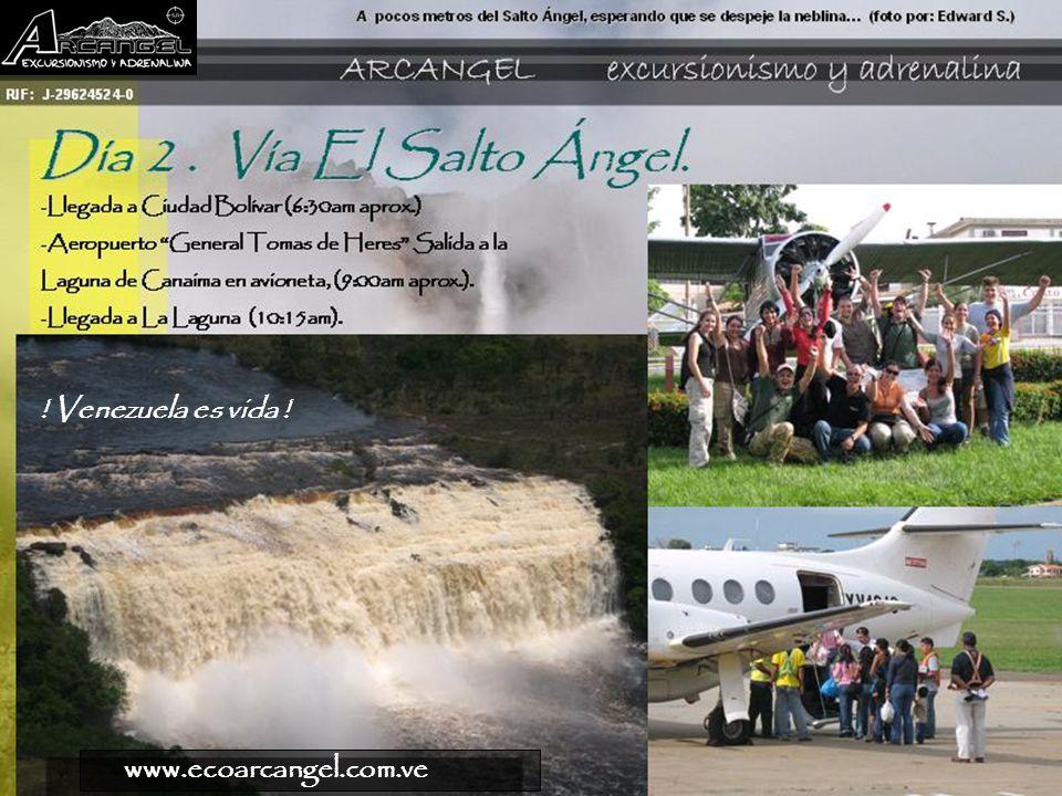 ! Venezuela es vida ! www.ecoarcangel.com.ve