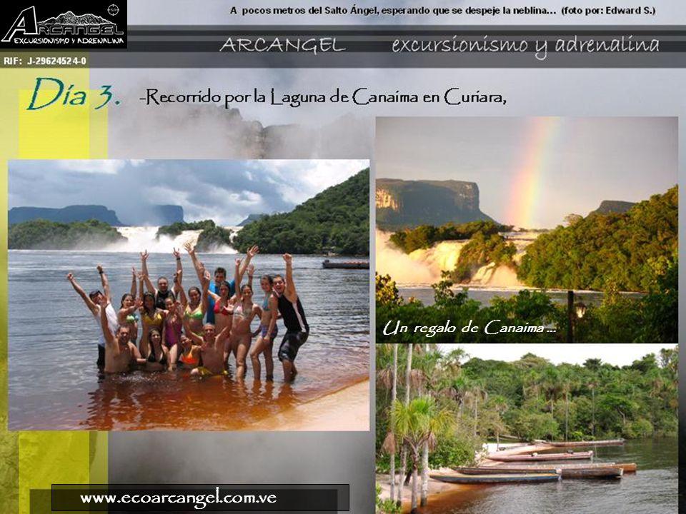 Un regalo de Canaima … www.ecoarcangel.com.ve