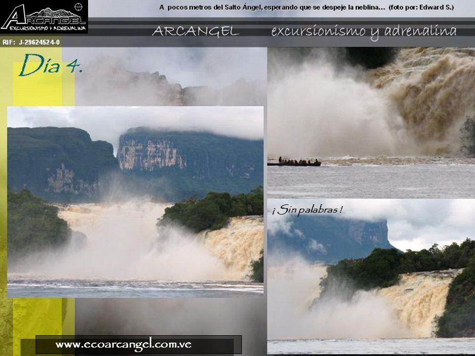 ¡ Sin palabras ! www.ecoarcangel.com.ve