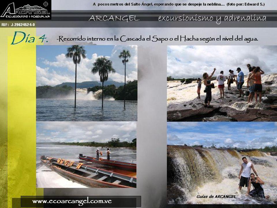 www.ecoarcangel.com.ve