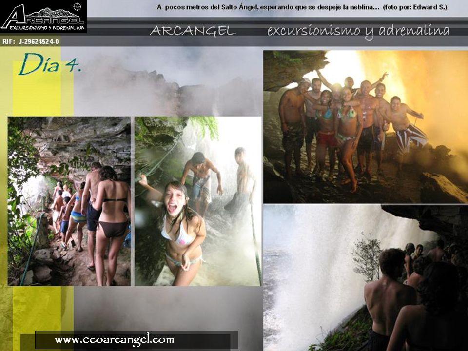 www.ecoarcangel.com