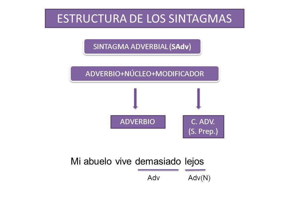 ESTRUCTURA DE LOS SINTAGMAS