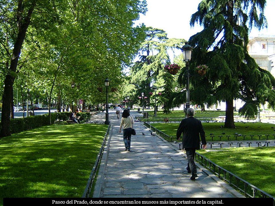 Paseo del Prado, donde se encuentran los museos más importantes de la capital.