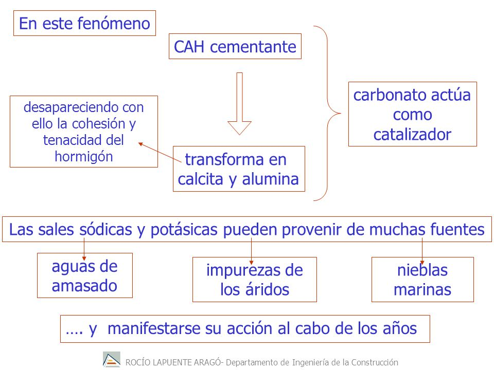 carbonato actúa como catalizador