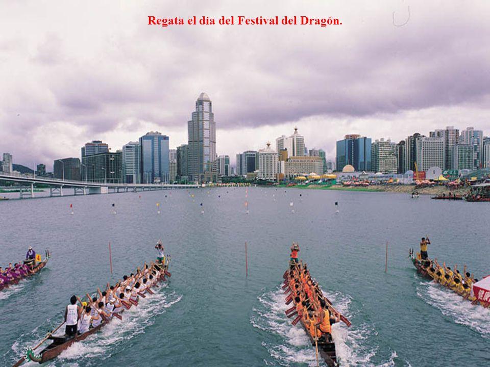 Regata el día del Festival del Dragón.
