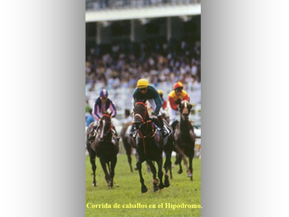 Corrida de caballos en el Hipódromo.