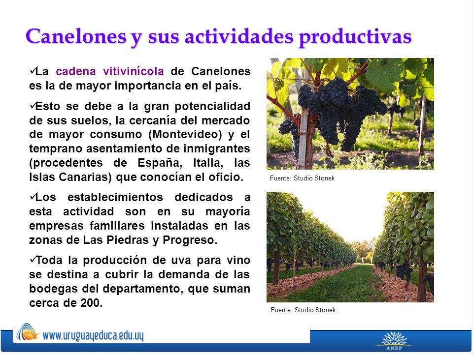 Canelones y sus actividades productivas
