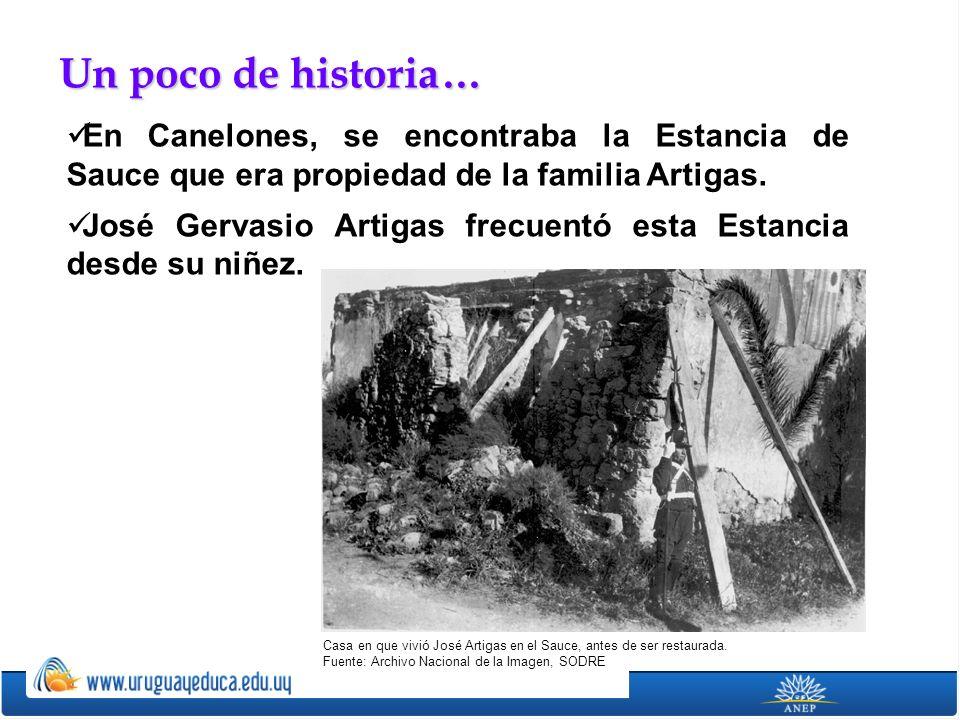 Un poco de historia… En Canelones, se encontraba la Estancia de Sauce que era propiedad de la familia Artigas.