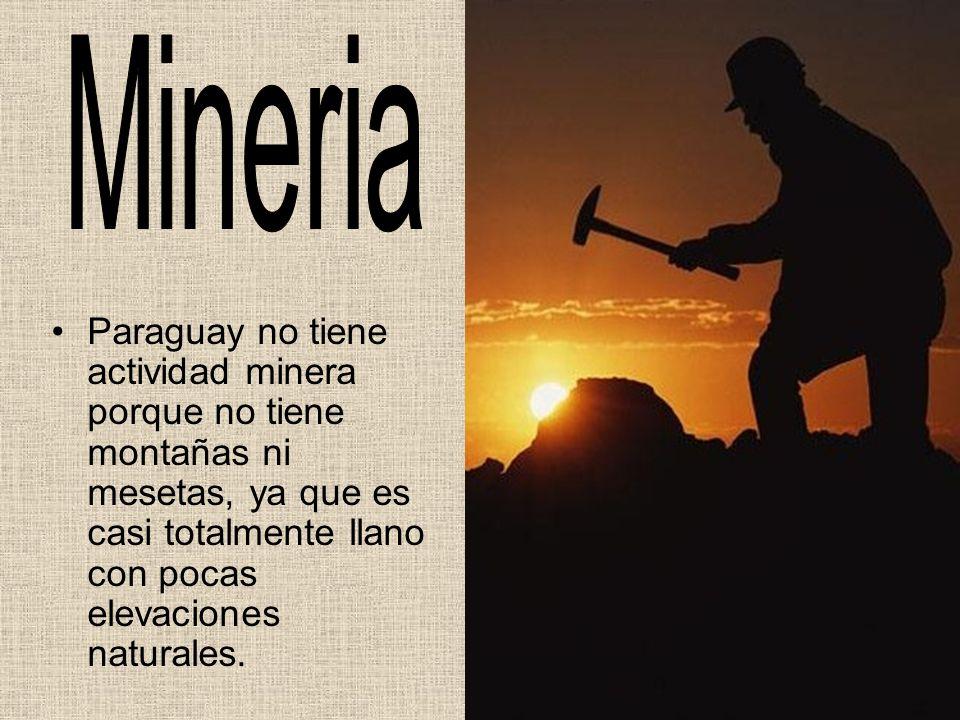 Mineria Paraguay no tiene actividad minera porque no tiene montañas ni mesetas, ya que es casi totalmente llano con pocas elevaciones naturales.