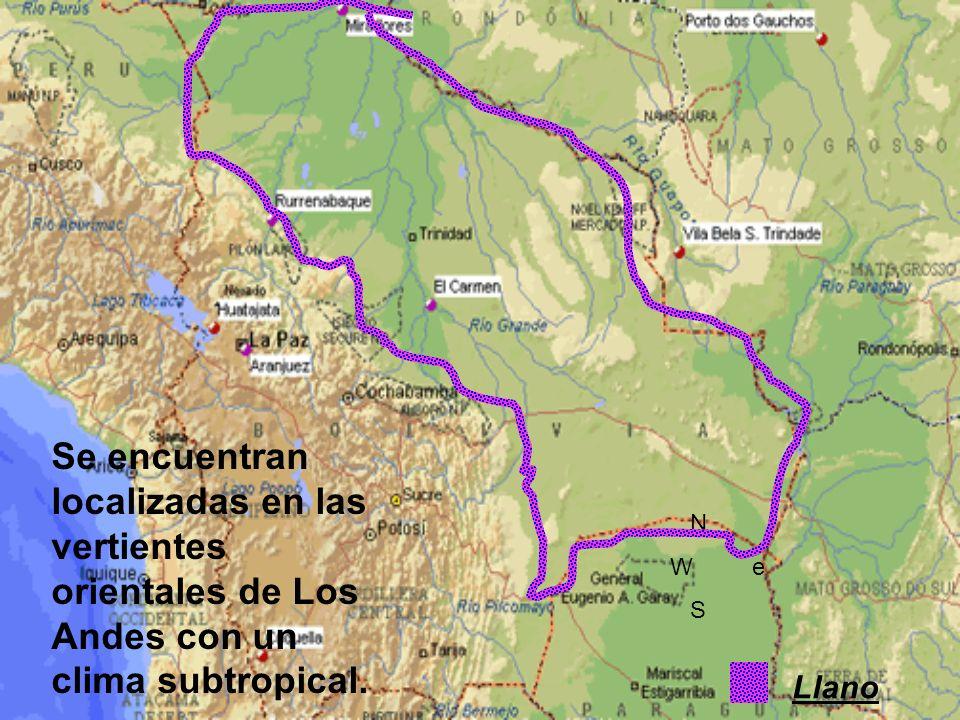 Se encuentran localizadas en las vertientes orientales de Los Andes con un clima subtropical.