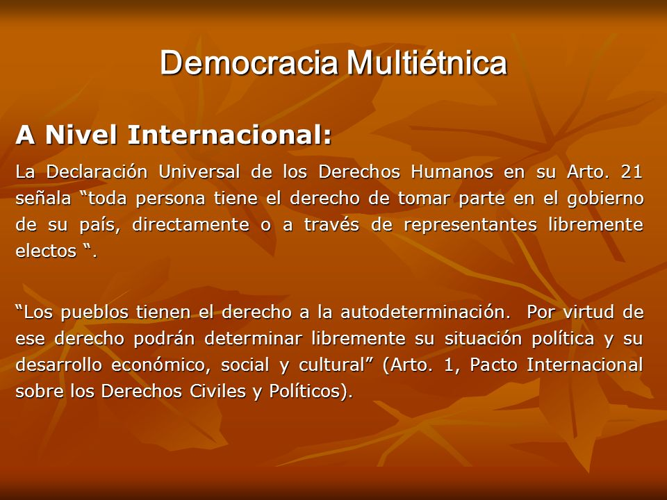 Democracia Multiétnica