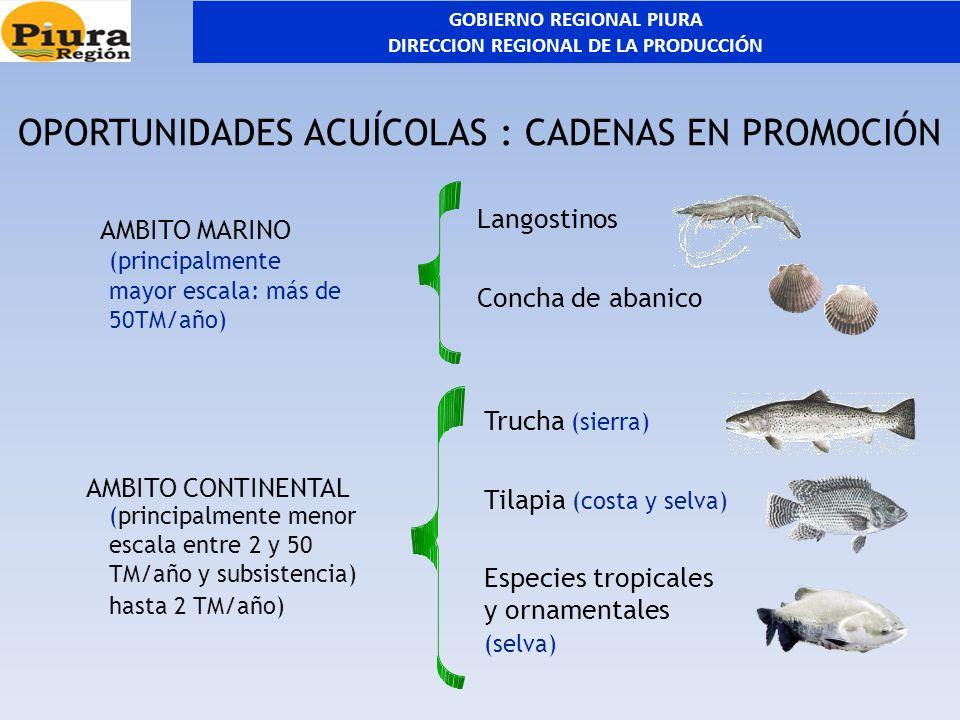 GOBIERNO REGIONAL PIURA DIRECCION REGIONAL DE LA PRODUCCIÓN