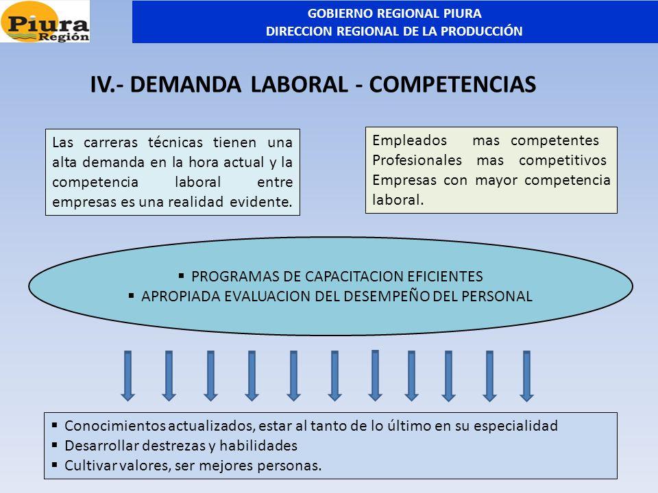 IV.- DEMANDA LABORAL - COMPETENCIAS