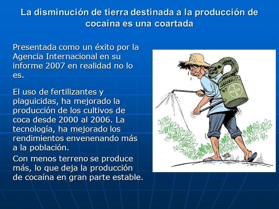 La disminución de tierra destinada a la producción de cocaína es una coartada