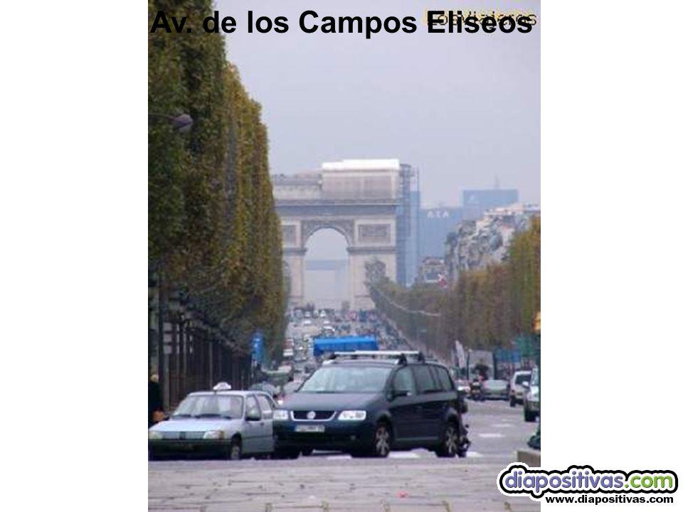Av. de los Campos Eliseos