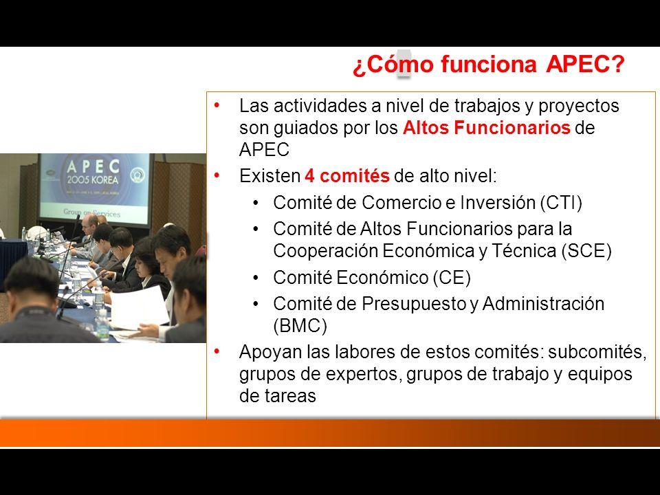 Las actividades a nivel de trabajos y proyectos son guiados por los Altos Funcionarios de APEC