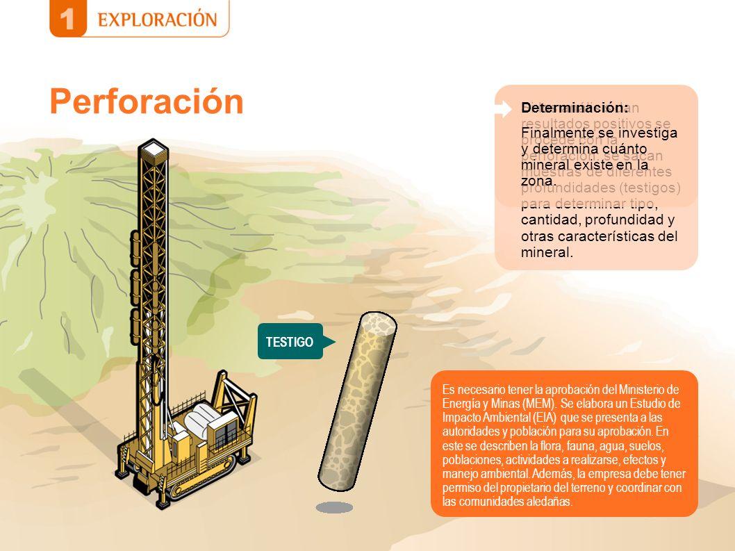 Perforación Determinación: