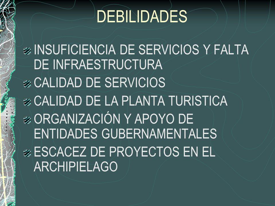 DEBILIDADES INSUFICIENCIA DE SERVICIOS Y FALTA DE INFRAESTRUCTURA