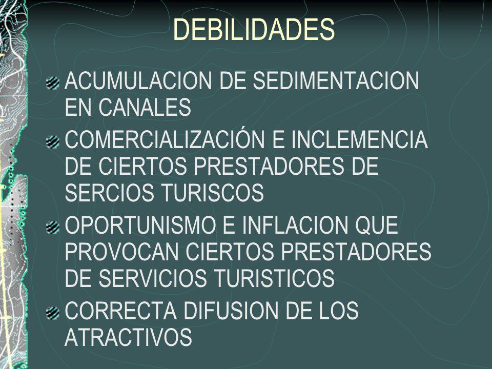 DEBILIDADES ACUMULACION DE SEDIMENTACION EN CANALES